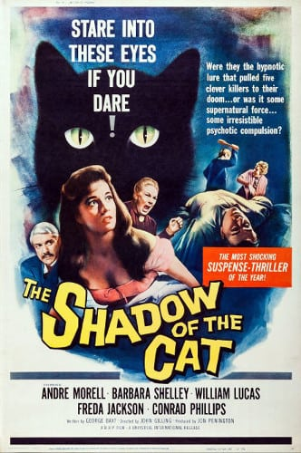 2_shadow-of-the-cat-40x60-1961